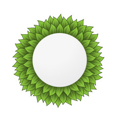 circle leaves frame vector image