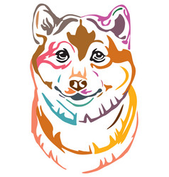 Colorful decorative portrait of dog shiba inu vector