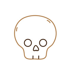 isolated skull design vector image