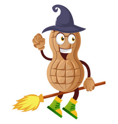 peanut flying on broom on white background vector image