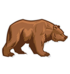 brown bear mascot vector image