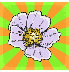 vintage grunge background with flower vector image