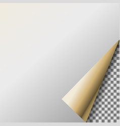 Page curl with pearl transparent corner vector