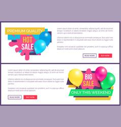 Premium quality total sale hot price promo sticker vector