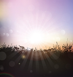 Silhouette of grass and plants against sunset sky vector image