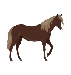 Sorrel Horse in Flat Design vector