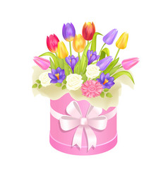 Spring delicious flower tulips bright daisiy box vector