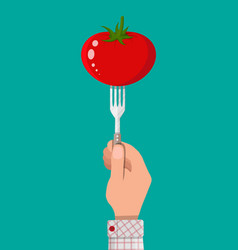 tomato vegetable on fork in hand vector image