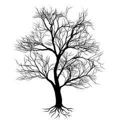 Hand drawn old tree silhouette vector