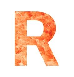 r land letter vector image