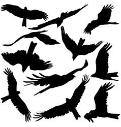 Set black silhouettes prey eagles on white vector