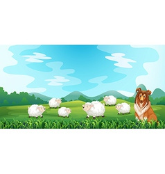 Sheeps and hound vector image