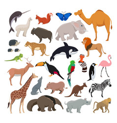 Big set with wild cute animals isolate on vector