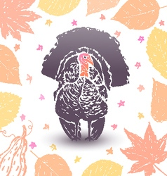 Thanksgiving turkey vector image vector image