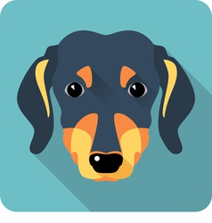 dog dachshund icon flat design vector image vector image