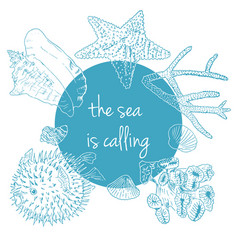 sea is calling marine background with seashells vector image vector image