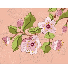 Colored Sketch of Sakura Branch4 vector image vector image