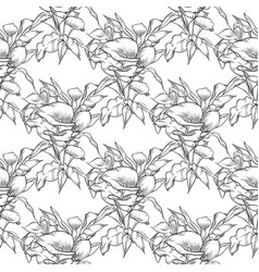 callas seamless pattern of flowers vector image
