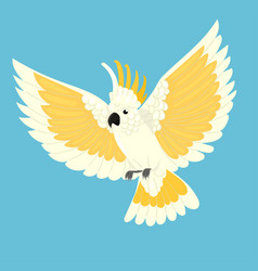 Cockatoo parrot in flight on a blue background vector