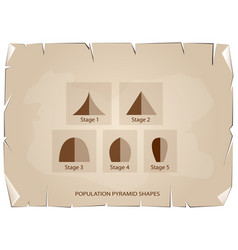 different types of population pyramids on old pape vector image