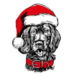 dog in santa stocking hat santa claus christmas vector image