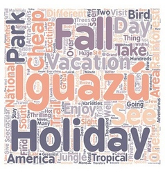 Enjoy Your Cheap Holiday Vacation To Iguazu Falls vector image