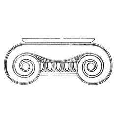 Ionic capital the volutes of its capital vintage vector