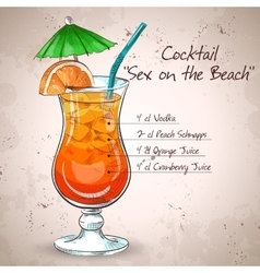 Sex on the Beach mixed drink vector image