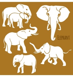 Set of African elephants in various poses vector image