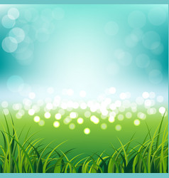 blue sky with fresh spring grass background vector image