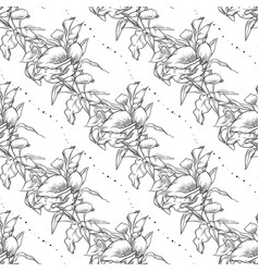 callas seamless pattern flowers vector image