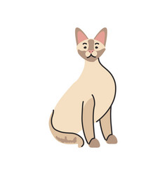 Cute domestic cat on white background vector