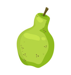 green pear fruit isolated on white background vector image