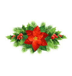 Red poinsettia flower christmas vector