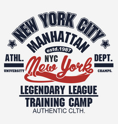 t-shirt stamp graphic new york sport wear vector image