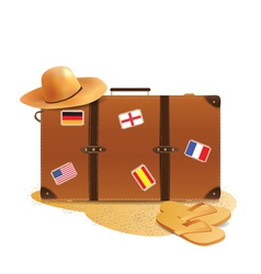 traveling accesories vector image