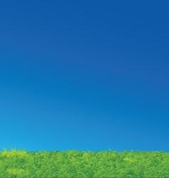 Nice Green Grass Blue Sky Landscape vector image vector image