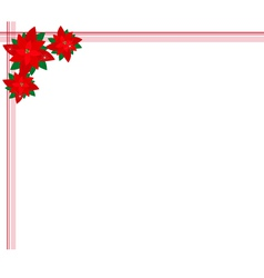 Poinsettia Flowers Forming A Christmas Background vector image