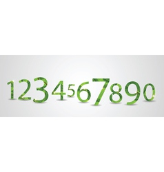 number leaves vector image vector image