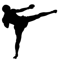 roundhouse kick outline vector image