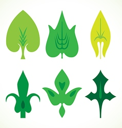 Decorative green leaves pattern set isolated on vector image