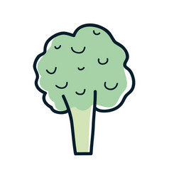 Health broccoli vegetable icon vector