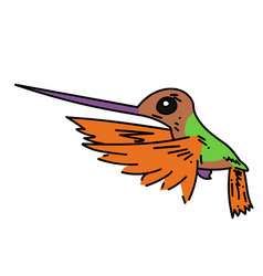 Hummingbird cartoon hand drawn image vector