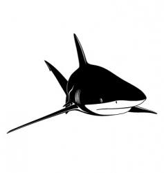 Shark tattoo vector