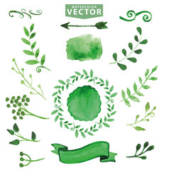 Watercolor green decorbranchesfloral set vector