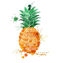 Watercolor of isolated pineapple fruit vector