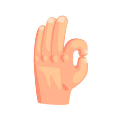 hand showing ok sign gesture cartoon vector image