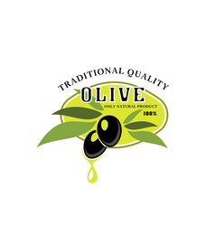 Olives icon for olive oil product label vector