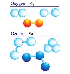 Molecule structures vector image vector image