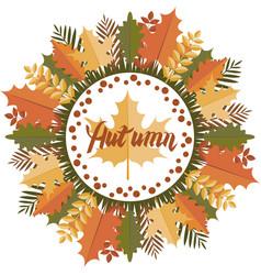 Autumn mandala circular pattern vector